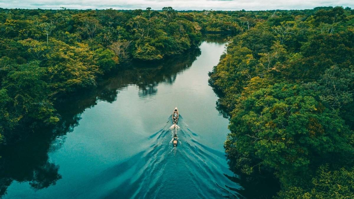 معلومات عن نهر الامازون 5