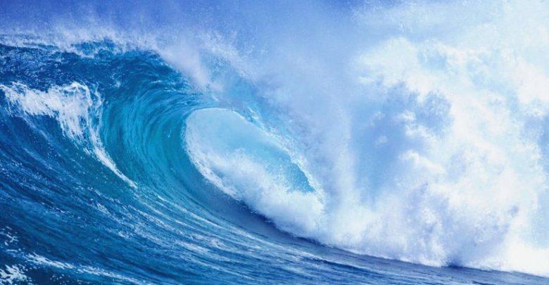 الانظمة البيئية المائية