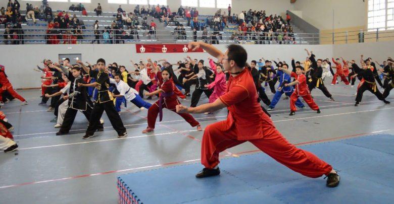 الفنون القتالية الصينية