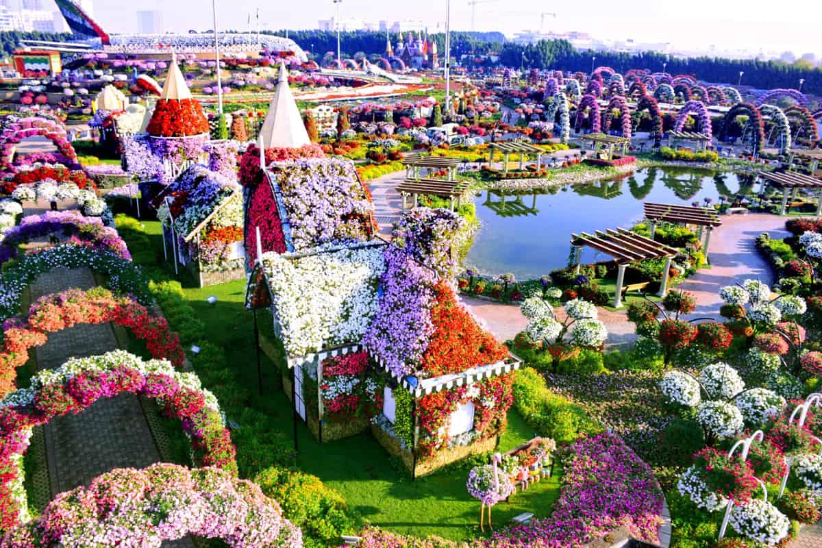 حديقة الزهور بدبي ويكيات